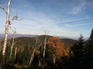 East Seneca Mountain